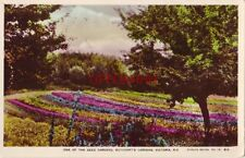 One Of The Seed Gardens, Butchart'S Gardens, Victoria, B.C. Canada