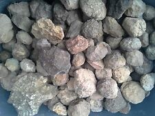 **ON SALE** Whole Unopened Kentucky Geodes (22-26 per box + 1 large geode FREE)