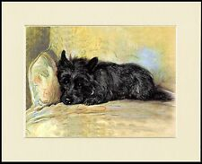 SCOTTISH TERRIER ON CHAIR LOVELY DOG PRINT MOUNTED READY TO FRAME