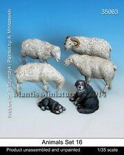 Mantis Miniatures 1:35 Animal Set 16, Sheeps & Sheepdogs Resin Figure Kit #35063