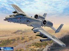 ART PRINT: A-10 Warthog Over Baghdad - Print by Shepherd