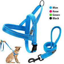 Reflective Nylon Dog Harness and Leash with Foam Padded Handle Pet Walking Vest