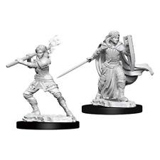 D&D Nolzurs Marvelous Unpainted Miniatures Female Human Paladin