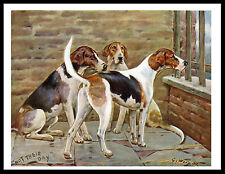 FOXHOUND DOGS IN KENNELS LOVELY VINTAGE STYLE DOG PRINT POSTER