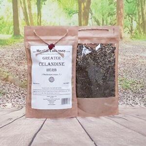 Greater Celandine Herb (Chelidonium majus L.) - Health Embassy 100% Natural