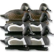 Avery Life-Size Ring-Necked Ducks 6 Pack 73040