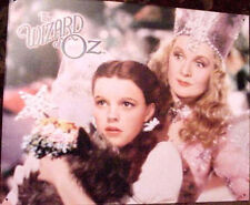 Wizard of Oz Dorothy Judy Garland Toto dog Art Tin Sign