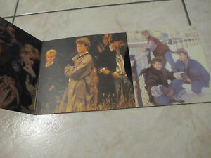 "A-ha  ,45 t vinyle,""Cry wolf """