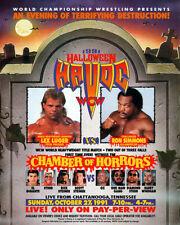 WCW Halloween Havoc 1991 Poster 16x20 Lex Luger Ron Simmons  WWE WWF