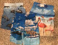 Boys Youth Swim Trunks Joe Boxer Sharks, Dinosaurs, Flamingos NEW