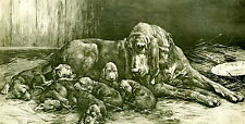 9x6 Animal Art Print HAPPY MOTHER Dog BLOODHOUND Nursing Litter of Puppies
