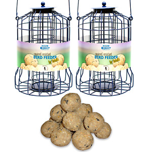 2 x Simply Direct Squirrel Guard Hanging Fat Ball Feeder with 6 Suet Balls Feed