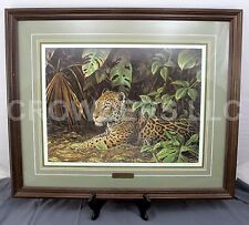 "Coheleach JUNGLE COVER Matted Framed Signed & Numbered Print #184/750 31""x25.5"""
