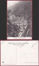 VERCELLI CARCOFORO 11 VALSESIA Cartolina