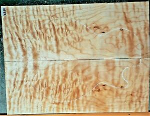 Quilted Maple 6858 Luthier Solid Body Guitar Top Instrument Wood 23x 17.5x .500