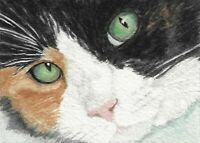 "ACEO - ATC Calico Cat PRINT of my Original Watercolor ""Pretty Girl"""