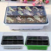 12/24 Holes Seeds Grow Nursery Box Insert Propagation Seedling Starter Tray Tool