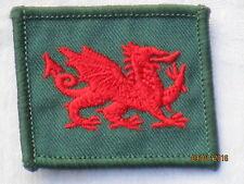 1st Battalion,The Royal Regiment of Wales , TRF, Patch,Abzeichen, 40x45mm