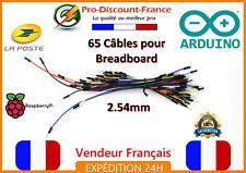 Lot de 65 Câbles pour BREADBOARD Arduino Raspberry PCB Electronique Robotique
