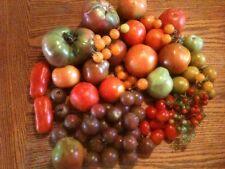 GLUTEN FREE VEGETABLES 25 Varieties  OVER 400 HEIRLOOM SEEDS -  EAT  HEALTHY...