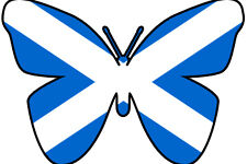 24 X EDIBLE BUTTERFLY CUP CAKE TOPPERS - SCOTLAND SCOTTISH FLAG OLYMPICS