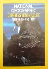 National Geographic Journeys With Wildlife-Walrus: Toothed Titans DVD
