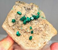 Small Cabinet Emerald Green DIOPTASE Crystals On Calcite From Kazakhstan