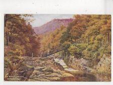 The Miners Bridge Bettws Y Coed AR Quinton Vintage Salmon Art Postcard 702a