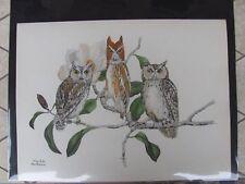 Original  Rex Brasher#373a,373b  Hand Colored Bird Print FL,TX Owl #373aREX2 DSS
