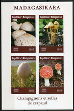 Madagascar 2019 MNH Mushrooms Fly Agaric 4v IMPF M/S Fungi Nature Stamps