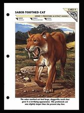 """SABER TOOTHED CAT"" PREHISTORIC ANIMAL/WILD LIFE FACT FILE INFO-CARD"