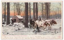 USA; At Work In a Maple Sugar Camp, Vermont PPC, Unposted, c 1910's