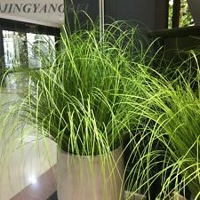 Artificial leaf onion grass plant silk flower Home Decoration simulation plants
