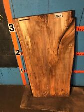 """#9905    1 5/8"""" THICK spalted maple live edge slab end table"""