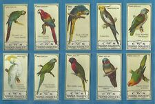 C.W.S...cigarette cards - PARROTS - Full mint condition set.