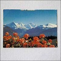 Berner Oberland 1994 Postcard (P410)