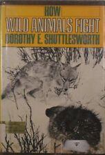 How wild animals fight