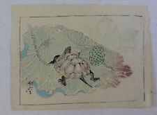 Flower, turtle :Japanese print original, Kyosai