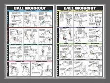 SWISS BALL WORKOUT Professional Fitness Gym Wall Charts 2 Poster Combo Set