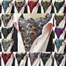 Men Vintage Jacquard Silk Paisley Long Scarves Cravat Ascot Neck Ties Gentleman