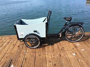 Cargo Box Bike  Bicycle Family Kids Trailer manual bike park beach.