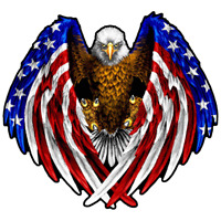 Bald Eagle USA American Flag Car Truck Window Decal Sticker Vinyl Patriotic