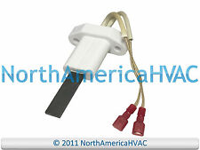 Polaris State Ameircan A.O.Smith Water Heater Ignitor Igniter 9004504205