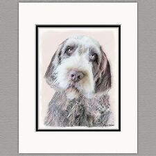 Wirehaired Pointing Griffon Original Print 8x10 Matted to 11x14