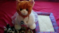 Build a Bear cat with clothes shoes jacket bed cell phone. 1 year old.