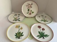 "Set of 5 X268 Italy Botanical Flowers 6.5"" Salad Plates Italian Pottery EUC"