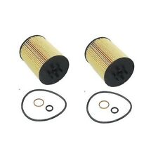 Set Of 2 Oil Filters Hengst 11427511161A For BMW E53 E60 E63 E65 E66 645Ci 745Li