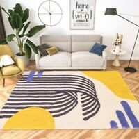 Modern Soft Carpets Fluffy Rug Sofa Floor Mat Thick Room Shaggy Rugs Carpets
