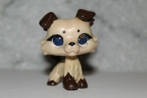 Littlest Pet Shop Resin/Glass-Eye Custom Collie Dog OOAK