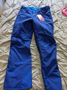 NWT The North Face Freedom Insulated Snow Pants, Blue Women's L